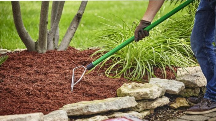 prevent weeds from growing