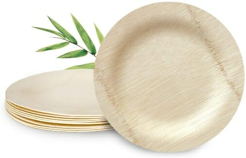 best-bamboo-disposable-plates