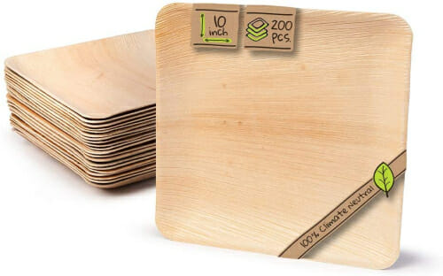 square biodegradable plates