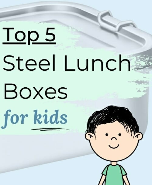 5-Unique-Stainless-Steel-Lunch-Box-for-Kids-Review
